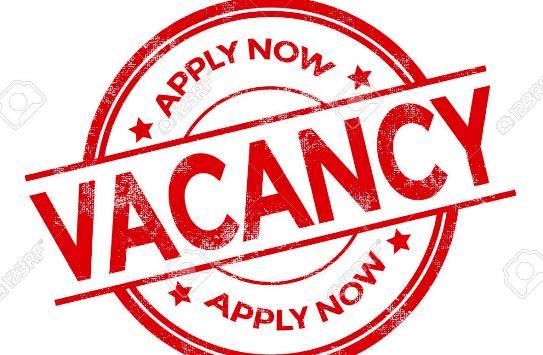 Lowongan Kerja Belu Terbaru Oktober 2020 Minggu Ini